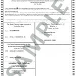 Sample Ballot for Democratic & Non Partisan Runoff