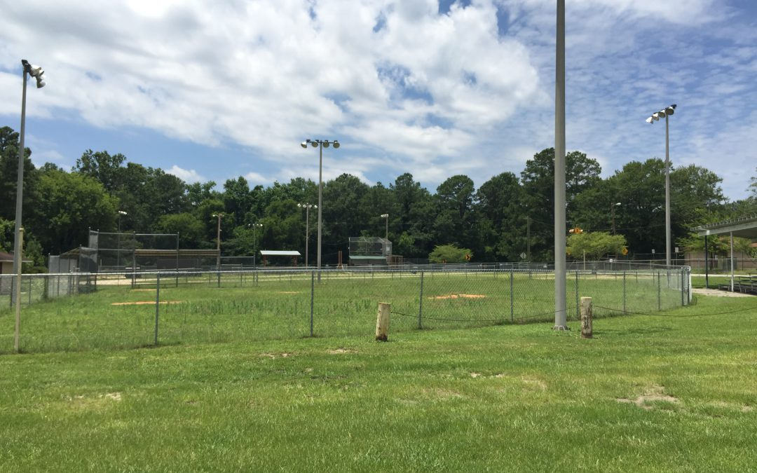 Lighting overhaul approved for two parks