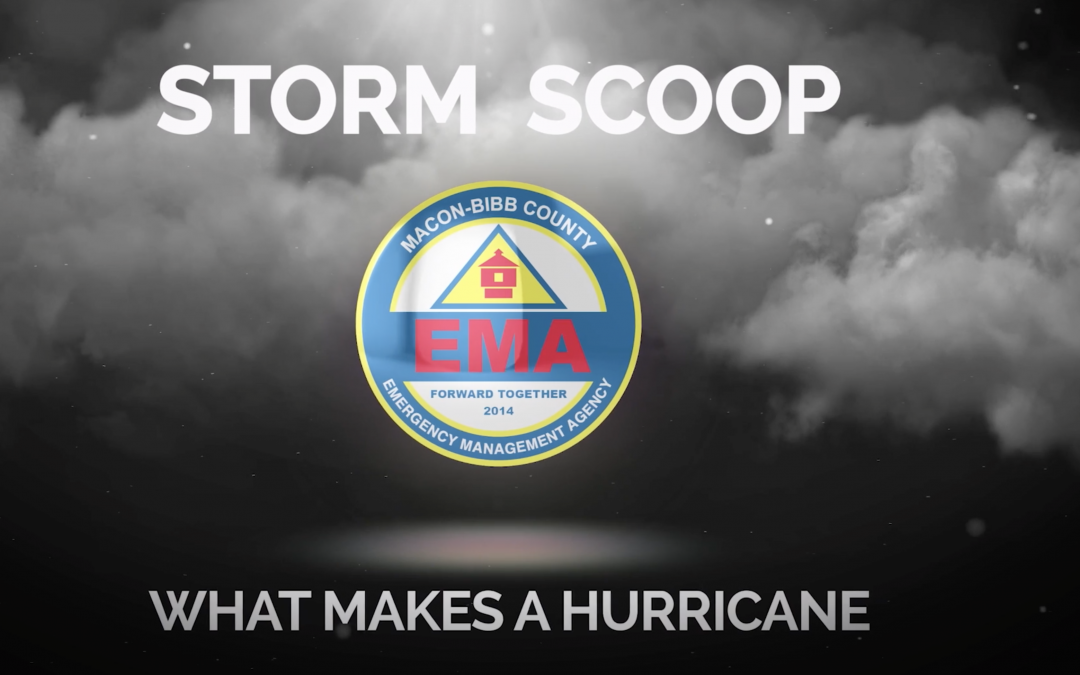 Storm Scoop: What makes a hurricane?